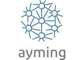 Logo AYMING - Partenaire BRANDON IP